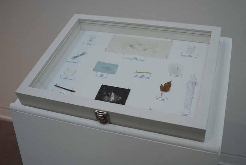 Les Petites Morts (The Little Deaths) Exhibits Case